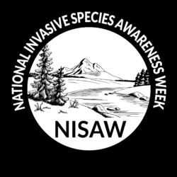 NISAW logo 2020-01