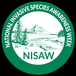 NISAW logo 2020-02