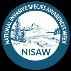 NISAW logo 2020-03