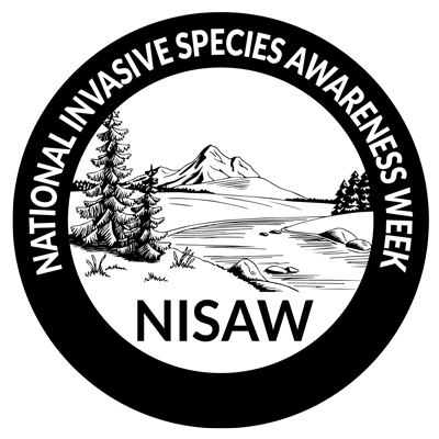 Black NISAW logo